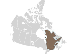 Quebec province highlighted on a map of Canada (Canada and Quebec Immigrant Investor Program)